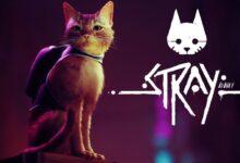 بازی Stray
